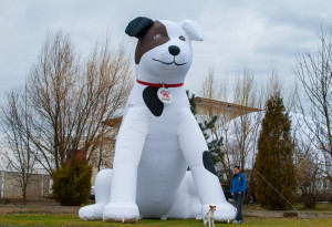 Inflatable Hond 6 meter
